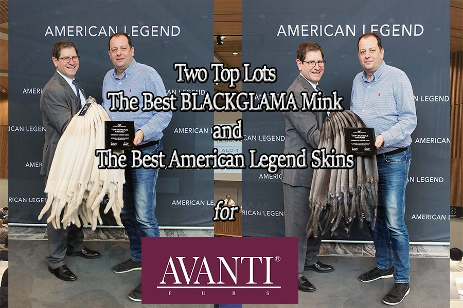 Great success at the Auction of American Legend for AVANTI FURS!